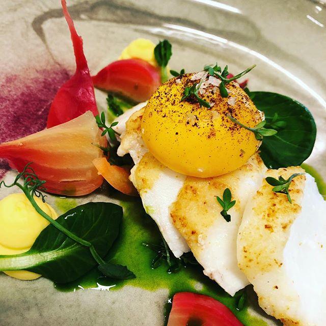 Flaked skrei 🐟🐟🐟 . #skrei #catering #cheflife #chefsofinstagram #gastronomia #fishfish