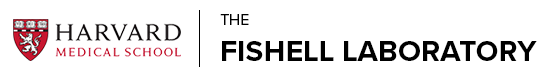 The Fishell Laboratory