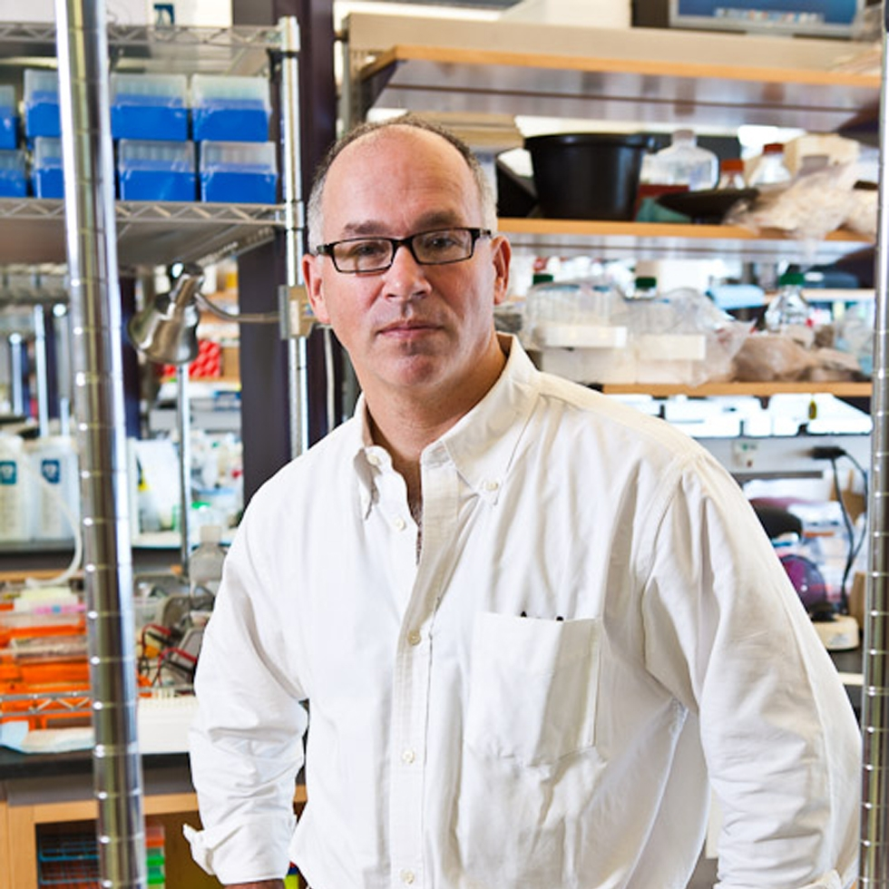 Gordon Fishell, PhD