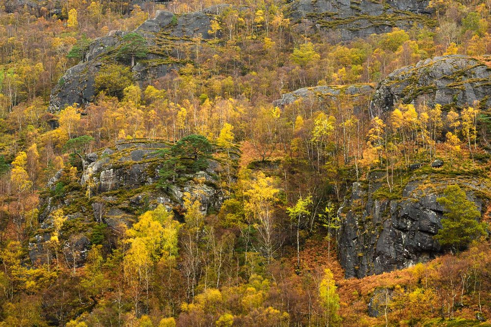 Autumn Colours and Rocky Outcrops