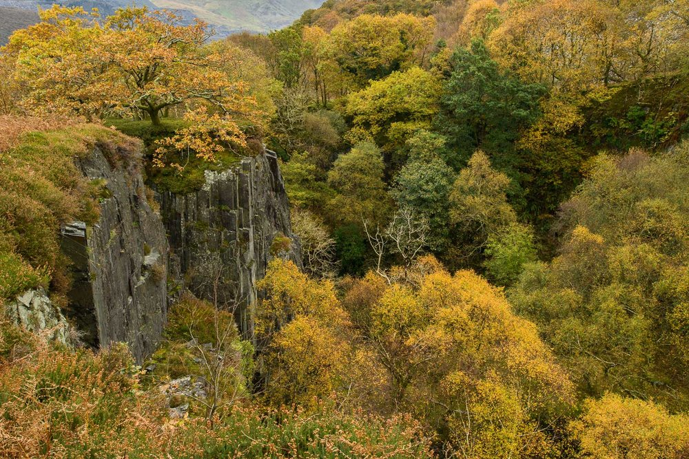Autumn in Glyn Rhonwy