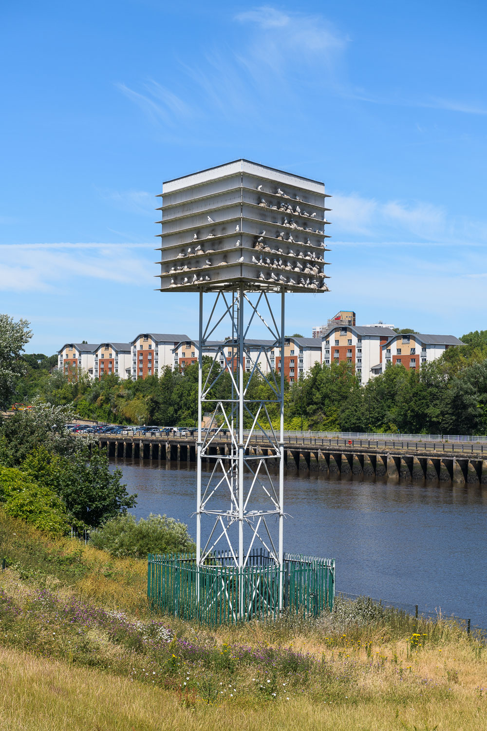 Kittiwake Tower