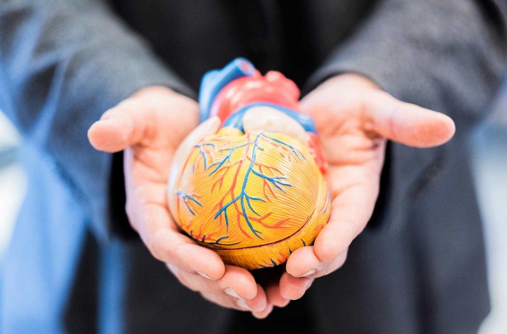 CAREFIB consortium  Novel means for stroke prevention