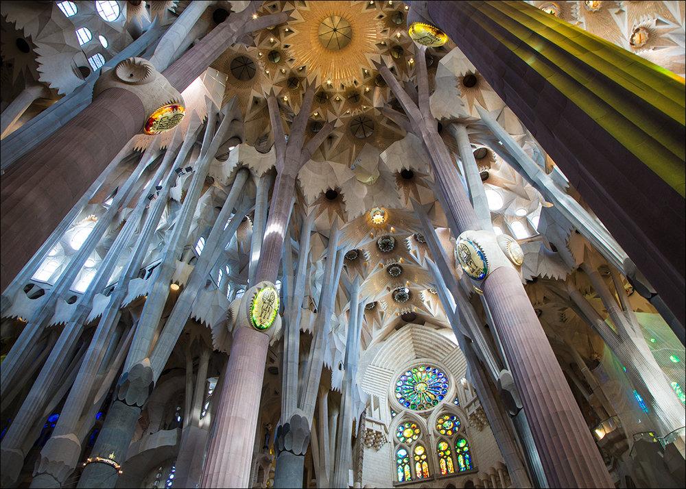 Ceiling, Sagrada Familia, Barcelona.
