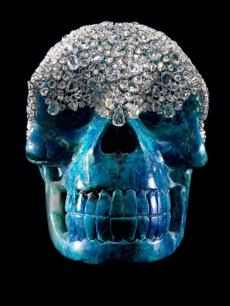 skull-L023469_new2010.jpg