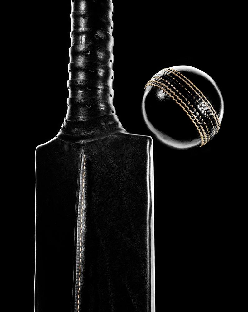 black_cricket_02_P11x14.jpg