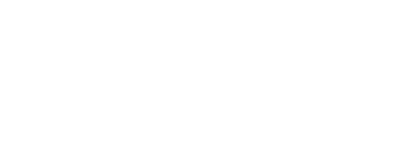 First Line Consulting