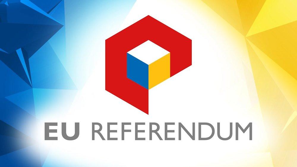 EU referendum pic.jpg