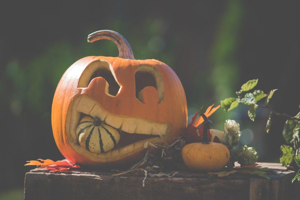 halloween-3707858.jpg