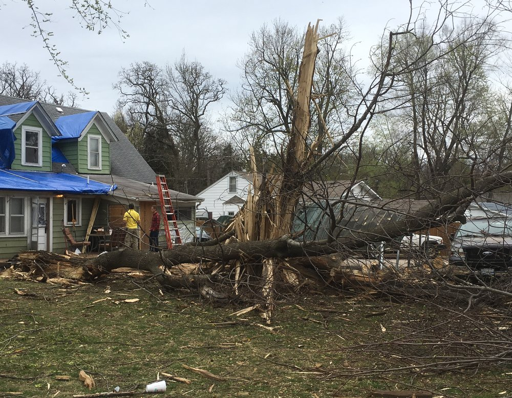 Emergency Tree Service - If a storm has made a tree dangerous, first take whatever steps are necessary to protect life and limb, then give us a call and we'll take whatever steps are available to protect your property and, if possible, save your tree. If removal is necessary, we are fully equipped to handle that as well.