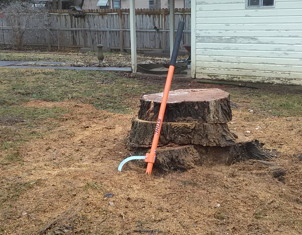 Tree removal - Tree removal involves more than just felling trees. First large limbs need to be removed to prevent as much damage to the ground as possible. Then the tree and branches have to be cut down to a size that can be hauled and chipped in the shredder.