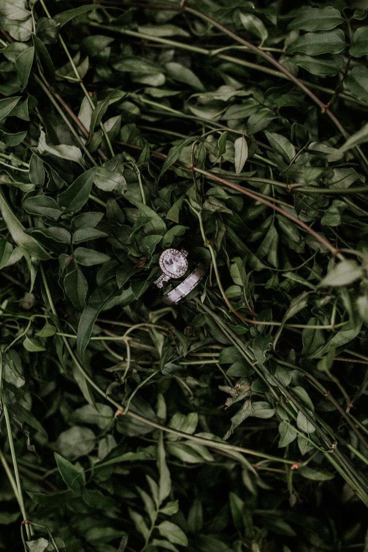 Endy -- Wedding-5.jpg