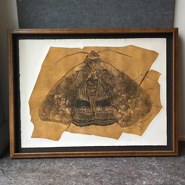 A spooky (and super cool!) collagraph moth print for this beautiful October morning.  #giganticmoth #framing #custompictureframing #pictureframing #littlelakesframing #geneseo #geneseony #smallbusiness