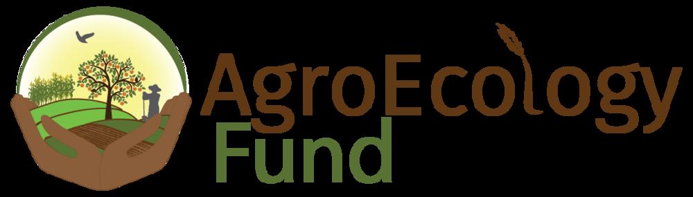 AEF_logo_1-01.png