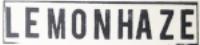 lh-logo-st.png