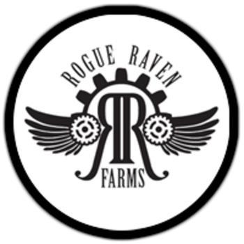 Rogue Raven.jpg