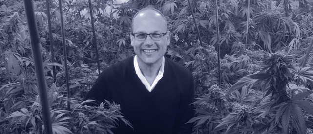 david_rheins_mjba_cannabis_business_entrepreneur_marijuana_weed_interview_cashinbis-1050x452.jpeg