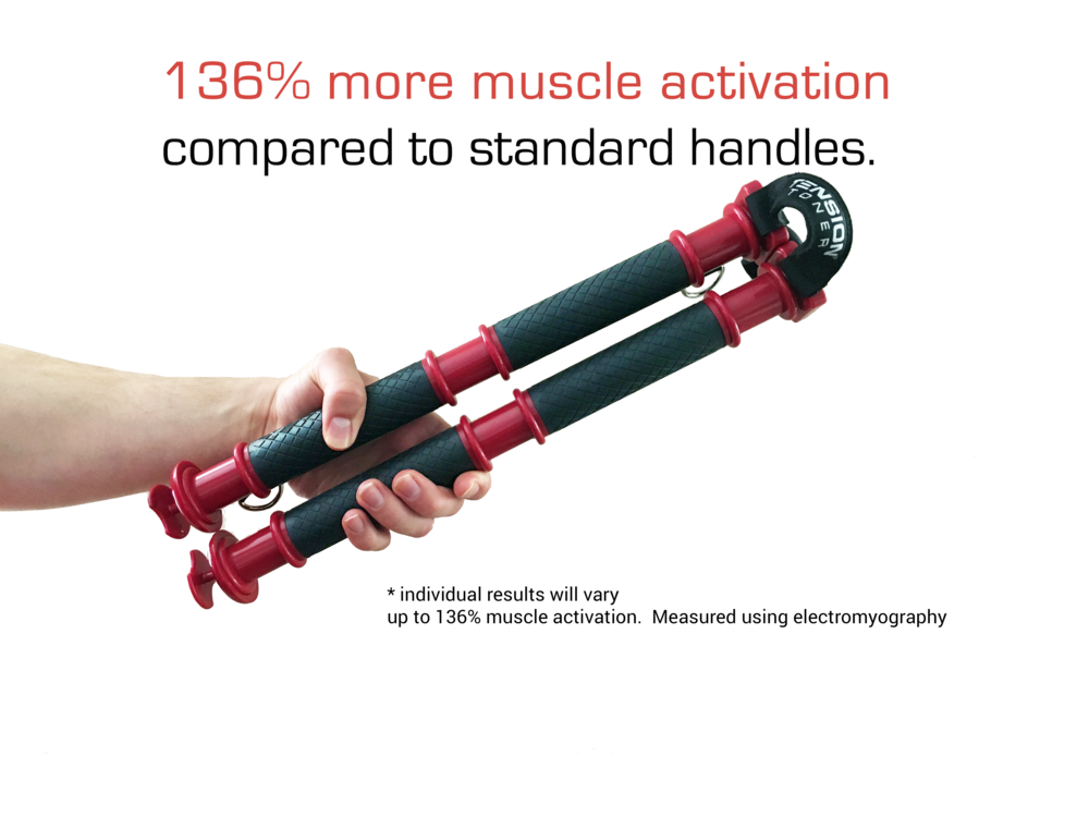 muscle activation for website.png