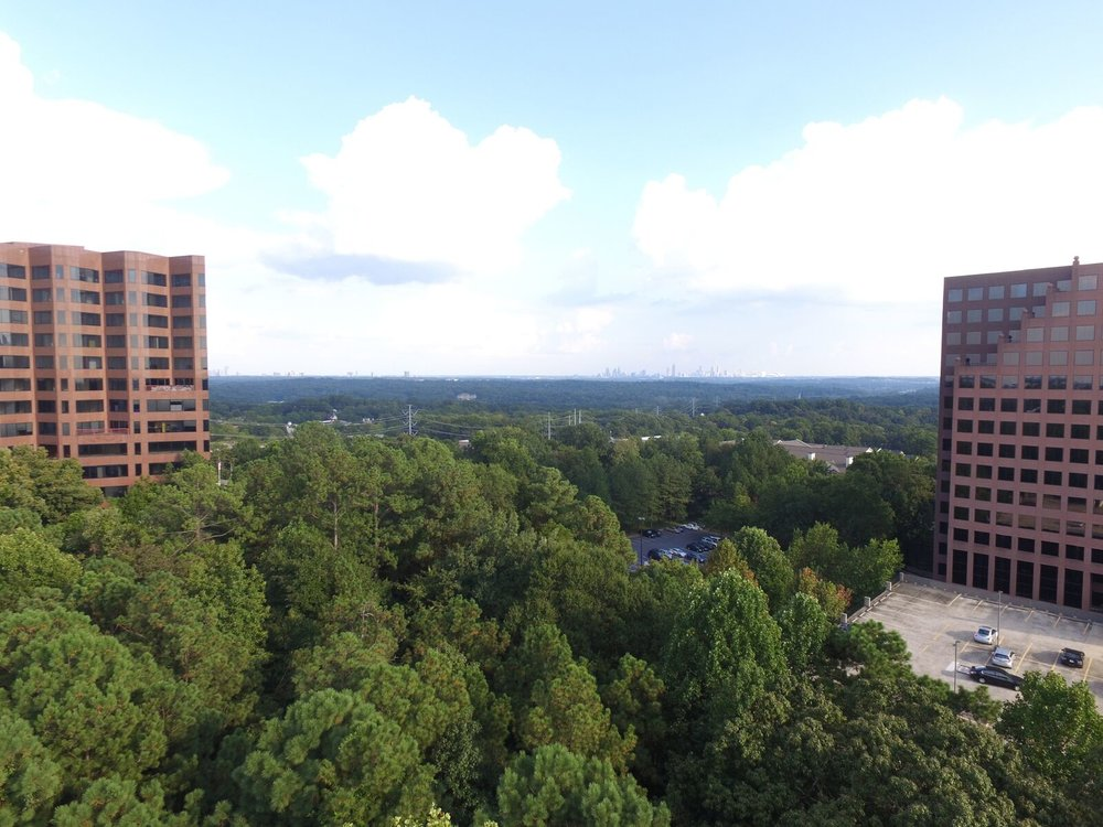 While the removal of some trees was required to make way for the mixed-use residential community, Gables partnered with Atlanta expert arborist, David Dechant at Arbor Guard, to minimize the impact to the tree canopy and surrounding environment.