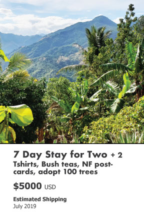 7 Day Stay