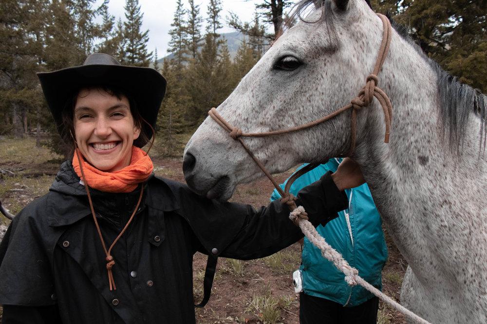 bob Marshall wilderness | pack trip | horse | back country horsemen of montana