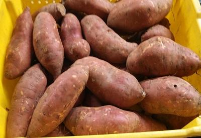 sweet potato website.jpg