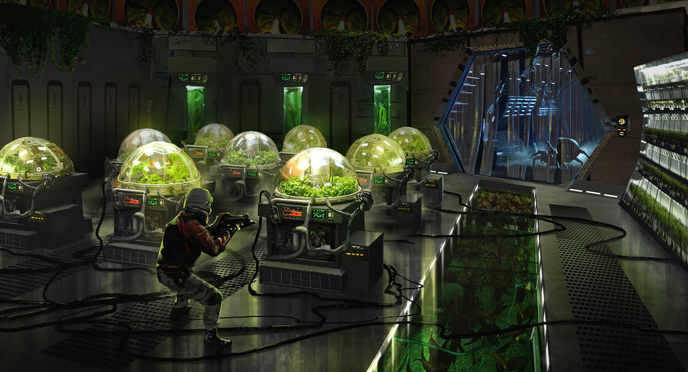 Andre Balmet_hydroponics.jpg
