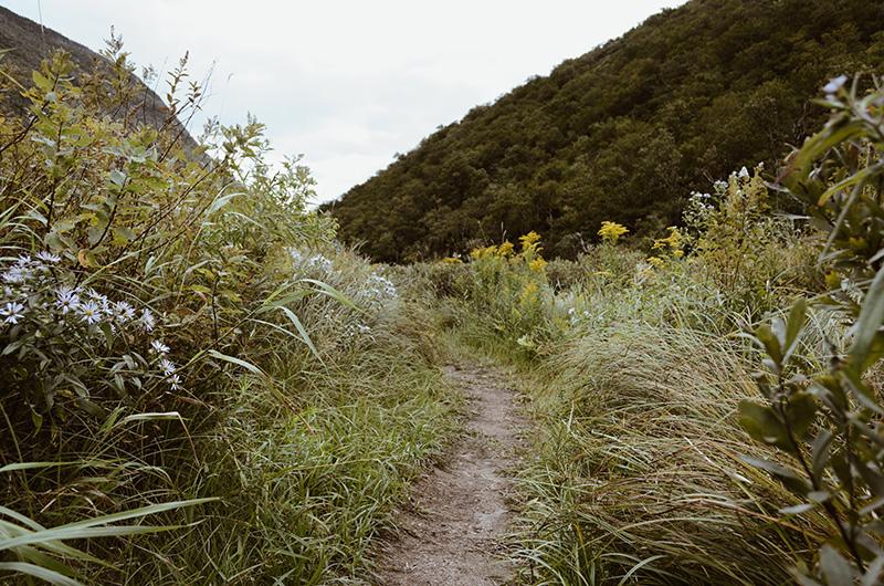 hiking_2.jpg