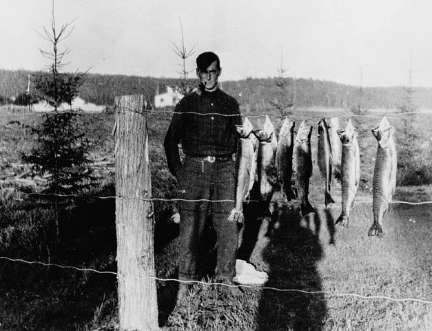 Image: Tom Thomson, Canoe Lake, Algonquin Park. Circa 1915.