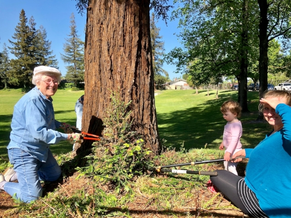 """Because I live here and I love Lodi."" ""I wanted to show Elly (19 months) what it's like to help"" FUMC clearing the brush at Vinewood Park."