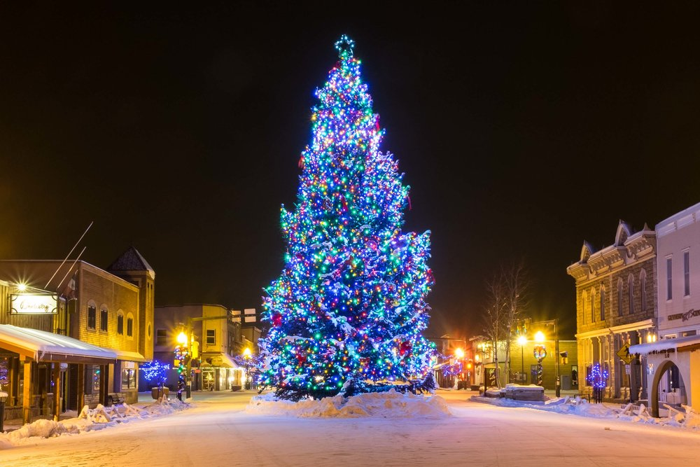 Gunnison Christmas Tree