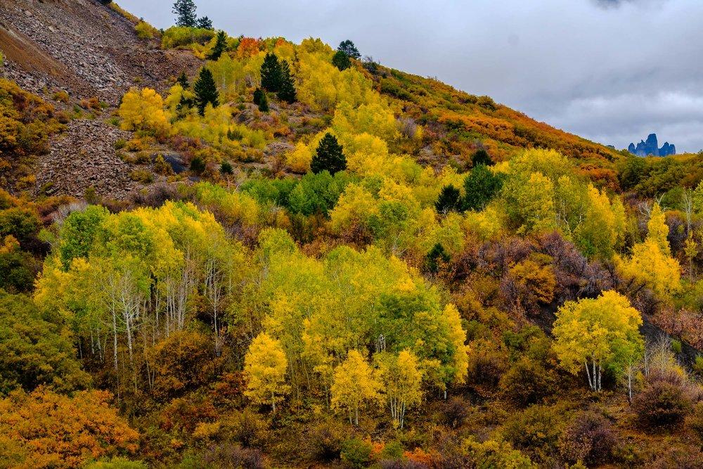 The earth tones of fall color along Owl Creek Pass - Fuji XT2, XF 50-140mm f/2.8 @ 66mm