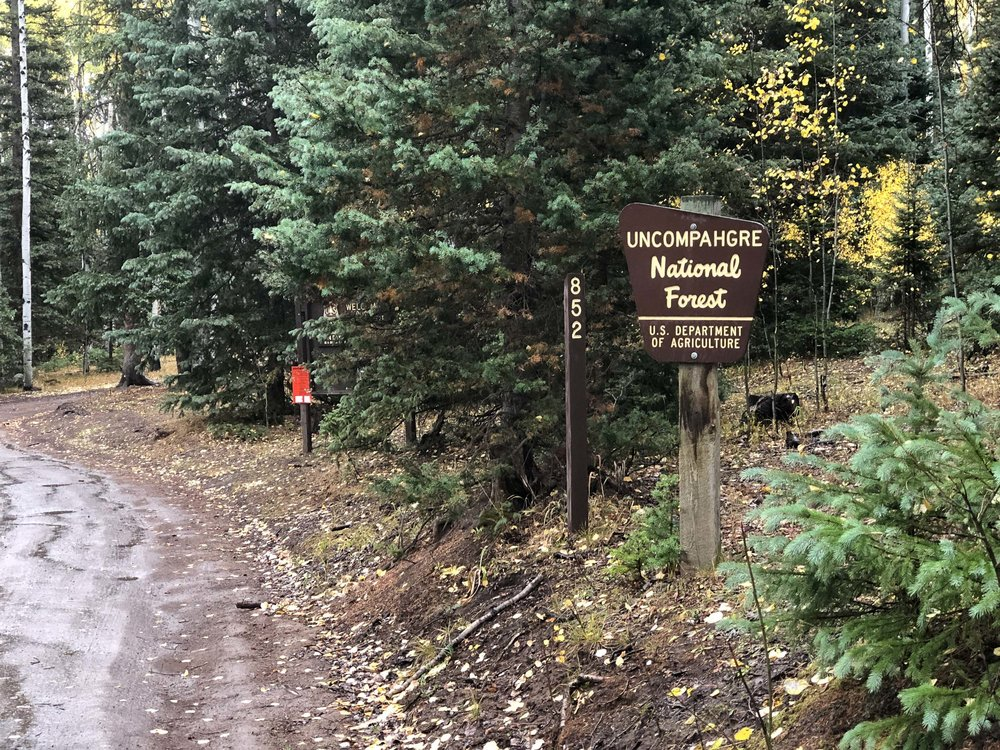 Uncompahgre National Forest Sign - iPhone 8 Plus