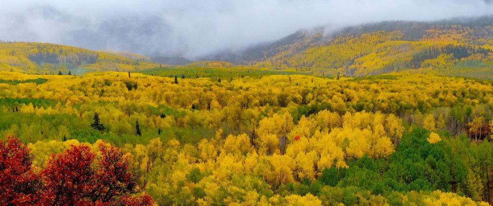 Colors along the West Elk Mountains - Fuji XT2, XF 50-140mm f/2.8 @ 54.1mm
