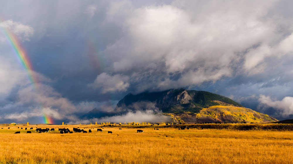 A Double Rainbow near Strand Hill as the cows graze in the fall near Crested Butte, Colorado - Fuji XT2, XF 23mm f/2 WR