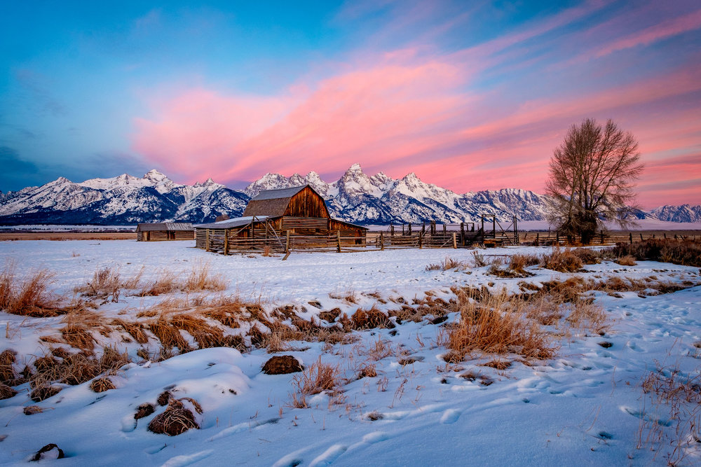 This was one of those perfect days with color in the sky. Boy it was cold. As we drove up on Mormon Row, the crowd of photographers were at the Thomas Moulton Barn. No one else had made the trek down toward John's barn so we headed down. I like to think I ended up with a better scene. I love the wonderful pink skies on this morning.