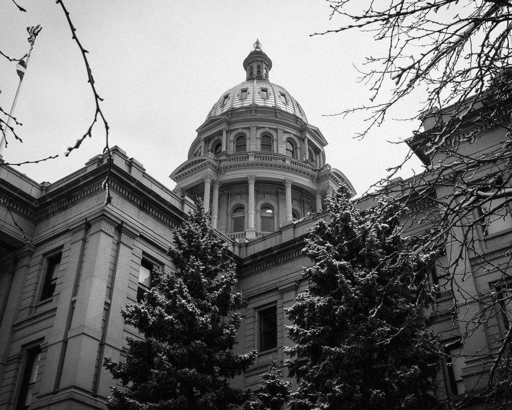Day 92- 365 Day B&W Photo Challenge - The Dome of the Colorado State Capitol Building through the frost and snow of the trees on the Capitol grounds- Fuji X100F, VSCO Fuji Neopan 400 preset