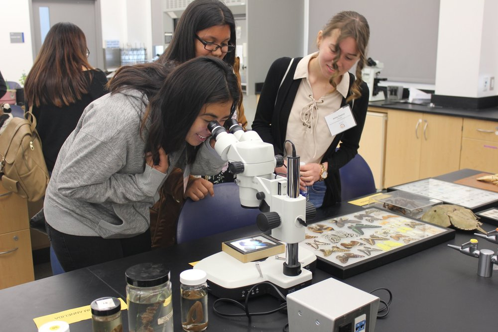 Students at 2018 Women in STEM Day