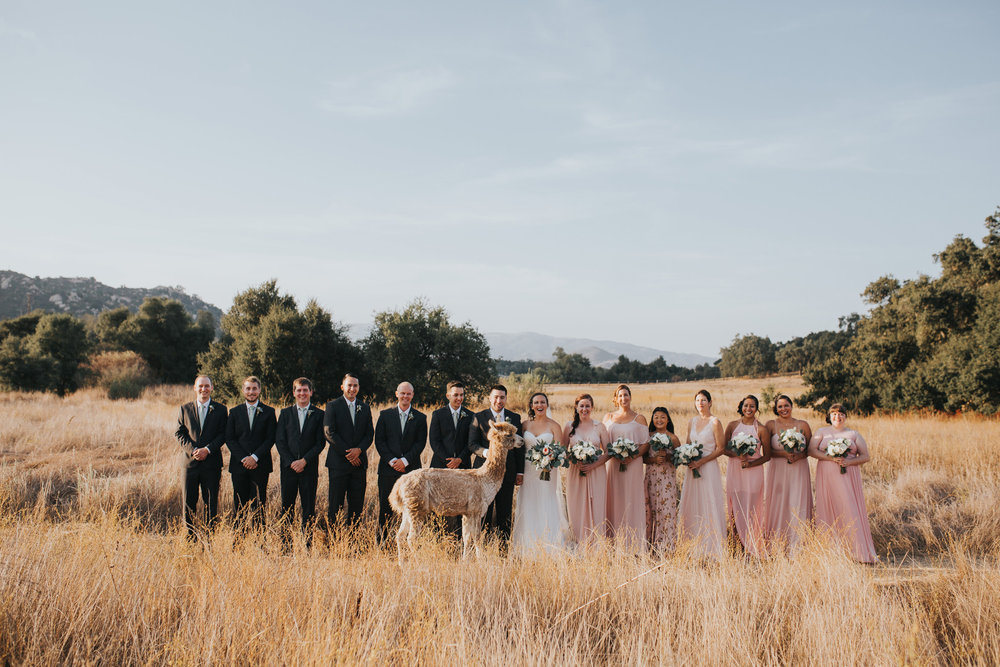 forever_and_always_farm_wedding_039.jpg