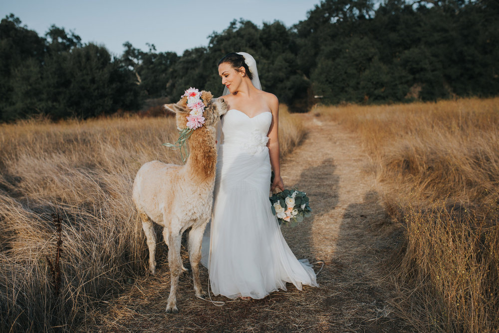 forever_and_always_farm_wedding_049.jpg