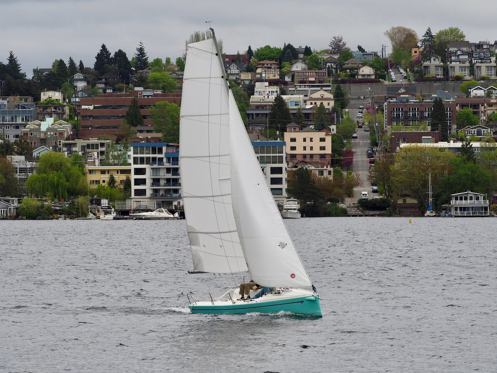 Whippet 21 Sport Trailer Sailer    - The first of the Kevin Dibley-designed Whippet 21 sportboat trailerable daysailers have landed in Seattle, Washington where Waterline Boats will be marketing them in North America. There are exciting plans for these yachts which include sailing schools, clubs, and corporate events. They consider this model as ideal to bring new people into sailing – easily managed and fun, capable of carrying a crew, and affordable.  Courtesy of Waterline Boats.