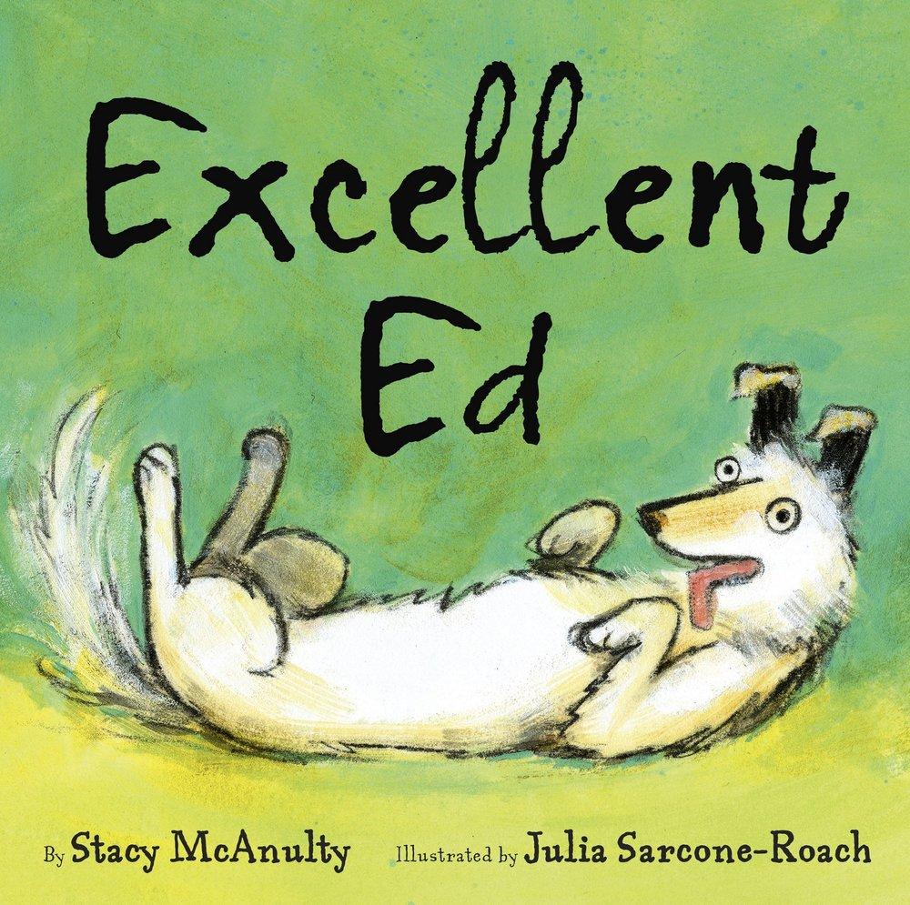 McAnulty, Stacy 2016_05 EXCELLENT ED - PB - RLM LK.jpg