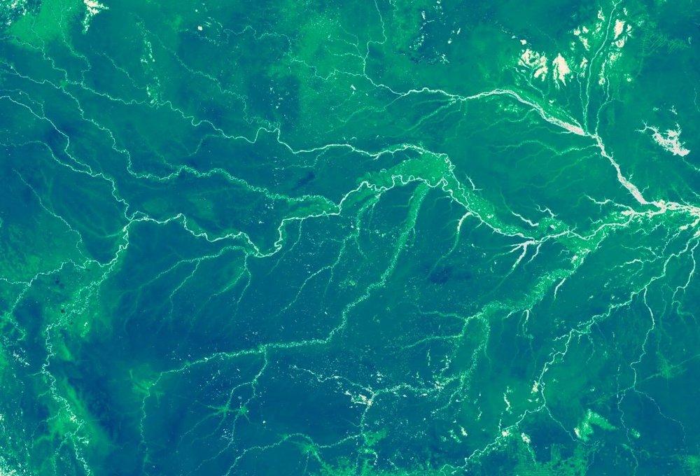 amazonian_rainforest_brazil-1-seenfromspace.jpg