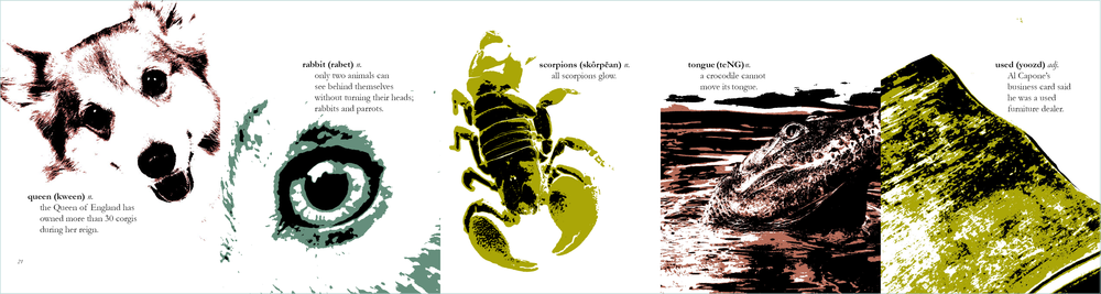 Final ABC Accordion Book revisions5.png