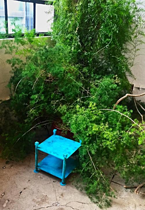 Telephone Table Garden .jpeg