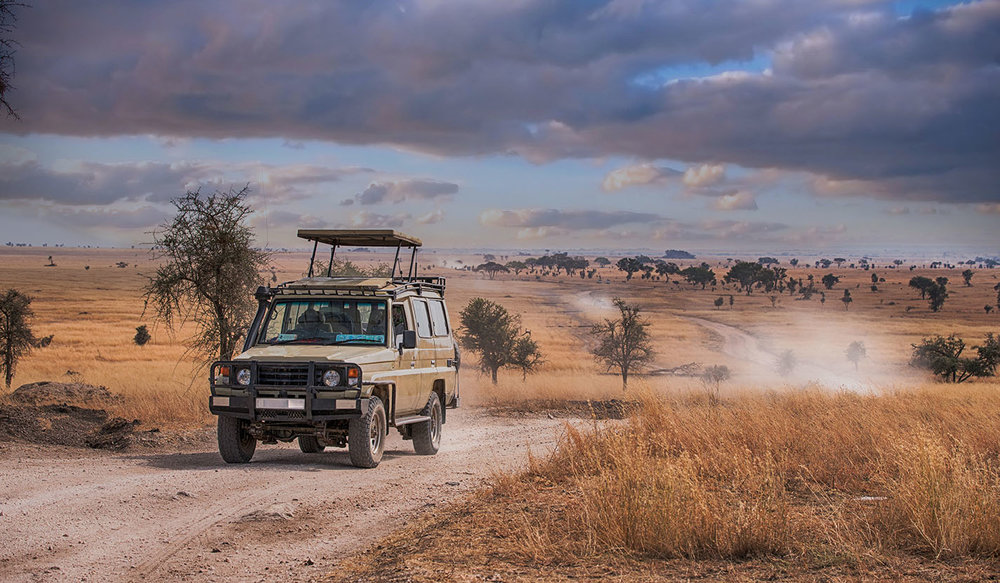 Safari_Luxury_Trip_6.jpg