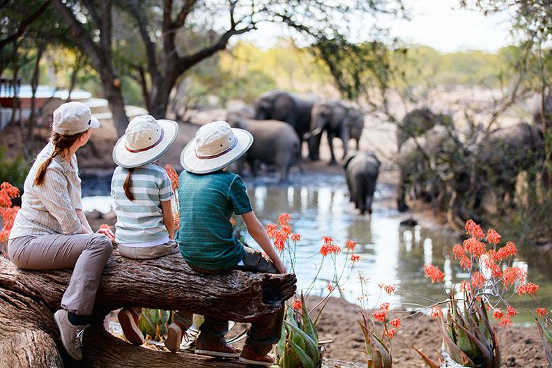 Safari_Luxury_Trip_6.jpg