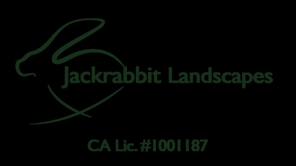 Jackrabbit Logo-02-01.png