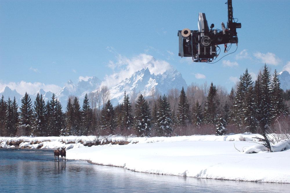 Camera & Moose GT-0231.jpg