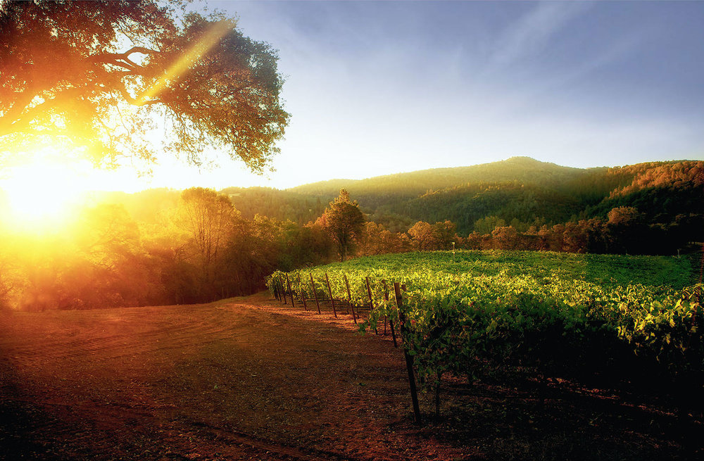 Pruett-Sunrise.jpg